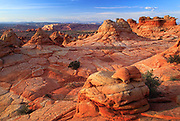 Rock formations in the South Coyote Buttes unit of the Vermillion Cliffs National Monument