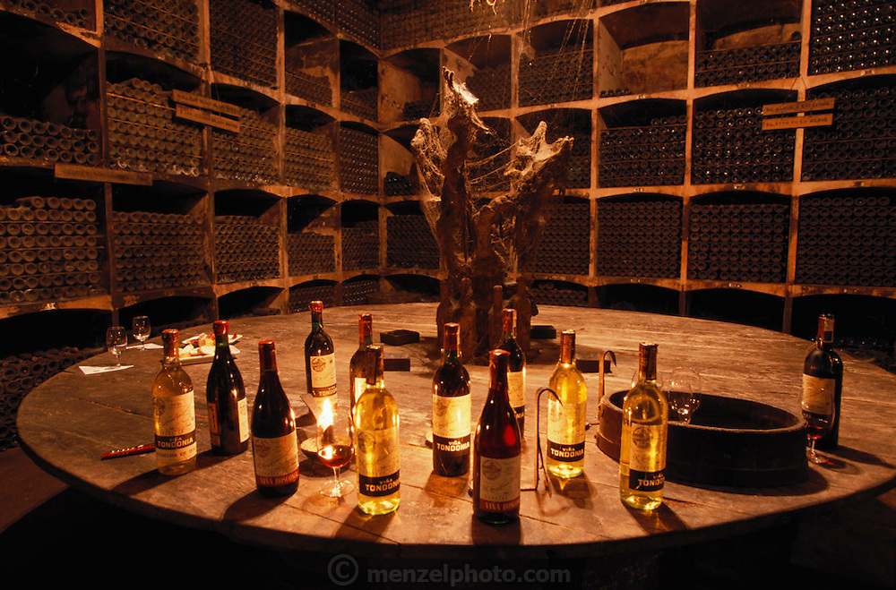 Tasting Room of R. Lopez Heredia winery, Haro. Dust, mold and cobwebs add to atmosphere.  La Rioja, Spain.