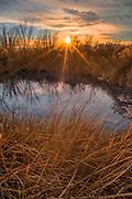 Longstreet Spring and Winter Sunset, Ash Meadows National Wildlife Refuge, Nye County, Nevada