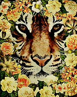 When you imagine an animal as striking and powerful as the tiger, you generally don't imagine such a creature surrounded by flowers. Yet that is indeed the case in this absolutely enchanting fine art offering by illustrator Jan Keteleer. The detail of the tiger is second only to the stunning detail to be found in the flowers themselves. –<br /> <br /> BUY THIS PRINT AT<br /> <br /> FINE ART AMERICA<br /> ENGLISH<br /> https://janke.pixels.com/featured/flower-power-tiger-jan-keteleer.html<br /> <br /> WADM / OH MY PRINTS<br /> DUTCH / FRENCH / GERMAN<br /> https://www.werkaandemuur.nl/nl/shopwerk/Flower-Power-Tijger/500162/132