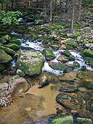 Wodospad Szklarki (woj. dolnośląskie), 26.07.2013. Ścieżka przyrodnicza do Wodospadu Szklarki tzw. Wąwóz Szklarki, Karkonoski Park Narodowy.