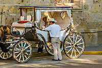 Calandrias (horse drawn carriages) and their drivers, on Avenida Corona in the historic Center of Guadalajara, Jalisco, Mexico