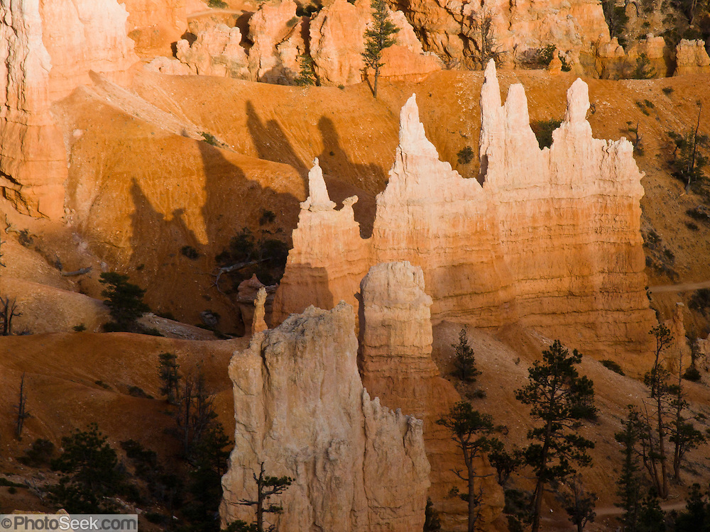 """Sunset spotlights the Queen's Garden, Bryce Canyon National Park, Utah. The hoodoo on the left looks like a standing profile of Queen Elizabeth with gown. Bryce is actually not a canyon but a giant natural amphitheater created by erosion along the eastern side of the Paunsaugunt Plateau. The ancient river and lake bed sedimentary rocks erode into hoodoos by the force of wind, water, and ice. Published in """"Light Travel: Photography on the Go"""" by Tom Dempsey 2009, 2010."""