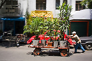 Tree seller Angel Guerrero pushes his cart down a street in Condesa, a chic neighborhood of Mexico City, Mexico, on June 19, 2008.