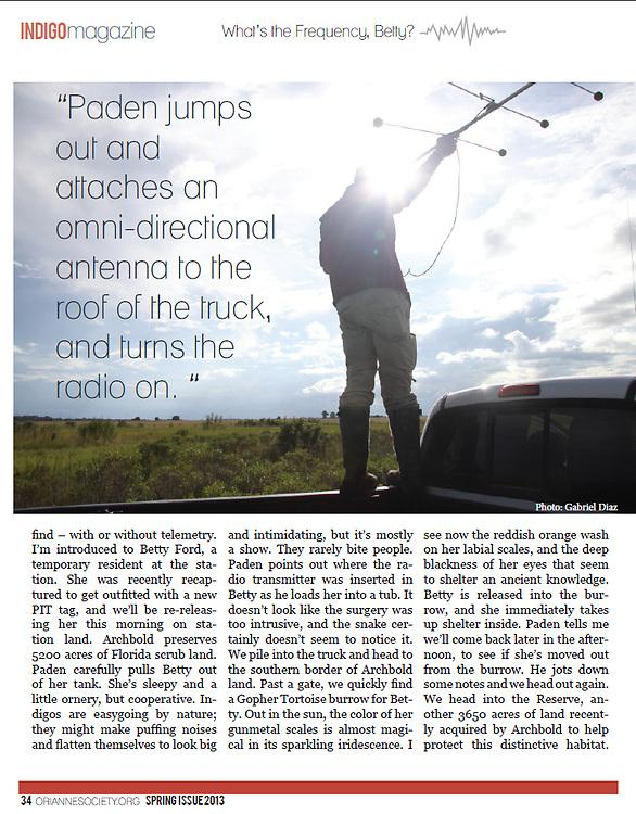 Orianne Society Indigo Magazine article Page 4