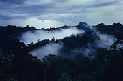 1991: Pristine Primary Rainforest overlooking canopy with rain clouds after a storm, in Belaga district, Sarawak, Borneo.<br /> <br /> Tropical rainforest and one of the world's richest, oldest eco-systems, flora and fauna, under threat from development, logging and deforestation. Home to indigenous Dayak native tribal peoples, farming by slash and burn cultivation, fishing and hunting wild boar. Home to the Penan, traditional nomadic hunter-gatherers, of whom only one thousand survive, eating roots, and hunting wild animals with blowpipes. Animists, Christians, they still practice traditional medicine from herbs and plants. Native people have mounted protests and blockades against logging concessions, many have been arrested and imprisoned.