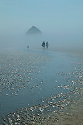 A young family walks on the beach near Haystack Rock, Oregon, in thick fog. Haystack Rock, remnants of an ancient lava flow, is one of the world's largest monoliths.