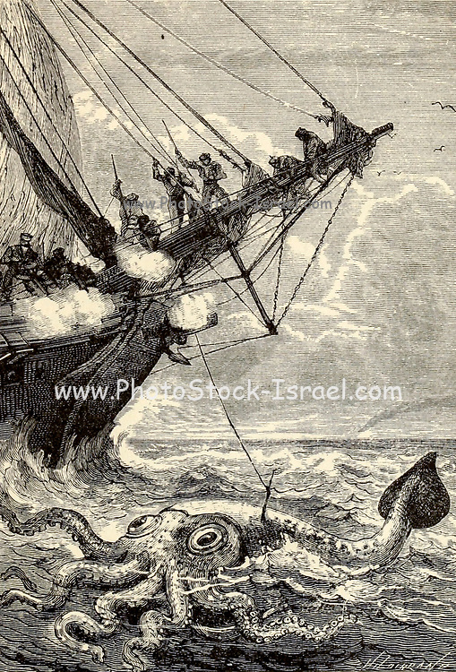Captain Bouguer attacked the poulp with harpoons and guns From the Book Twenty thousand leagues under the seas, or, The marvelous and exciting adventures of Pierre Aronnax, Conseil his servant, and Ned Land, a Canadian harpooner by Verne, Jules, 1828-1905 Published in Boston by J.R. Osgood in 1875
