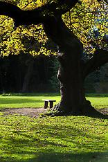 Sheffield Parks