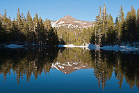 Reflection in small pond of Mt. Gibbs, Yosemite national park, California
