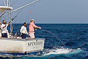 Fly rod angler doing battle in corner of express boat with heavy offshore fly tackle.