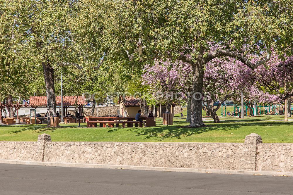 People Sitting at Hart Park in Orange California