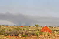 termite mound with worker's helmets in the outskirts of Great Sandy Desert, Western Australia. Bush fire in the background