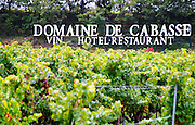 Sign in the vineyard Domaine de Cabasse, wine, hotel, restaurant. Grenache vines. Domaine de Cabasse Hotel Restaurant, Alfred and Antoinette Haeni, Séguret, Seguret Cote du Rhone Vaucluse Provence France Europe