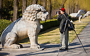 Man photographs statue of a resting lion, Spirit Way, Ming Tombs, Beijing (Peking), China