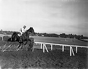 Horse Racing at Leopardstown..1961..13.02.1961..02.13.1961..13th February 1961..Scene from the horse racing at Leopardstown as horse takes a hurdle in its stride.