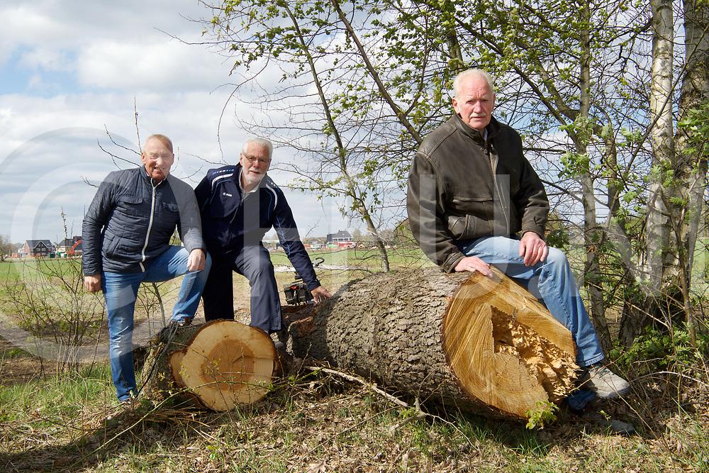 OMMEN - Boom in vuur.<br /> Foto: Eddy Mooijers  (l) Gerrit Steen (m) en Jan Makkinga  kunnen de boom met man kracht niet weg krijgen.<br /> FFU PRESS AGENCY COPYRIGHT FRANK UIJLENBROEK