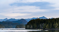 Mountains and forest of Meares Island at dawn, British Columbia, Canada