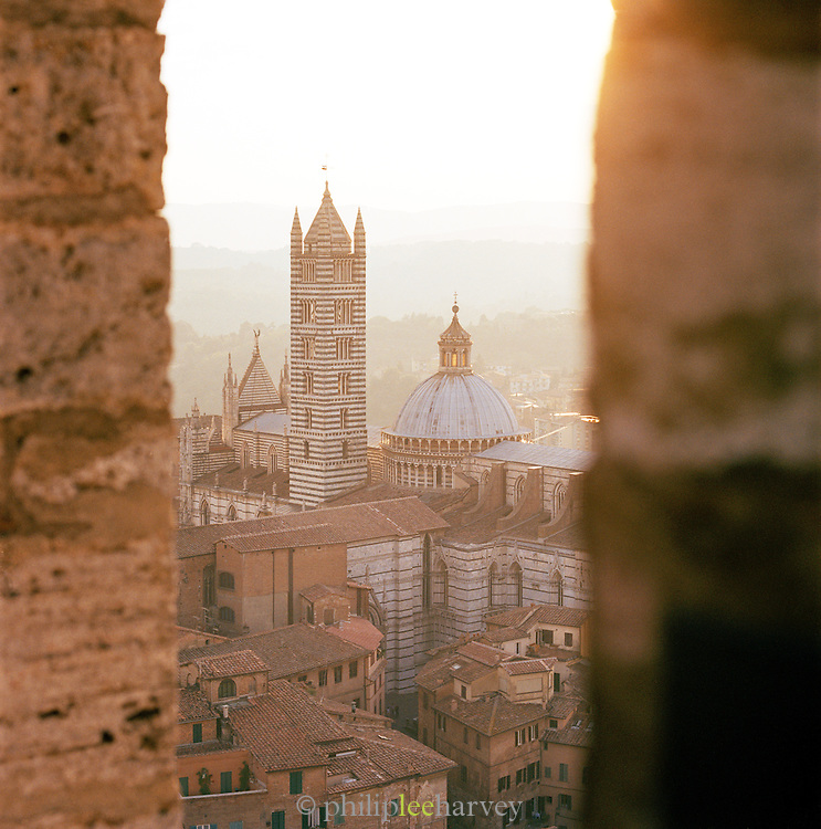 View of Duomo Cathedral from the tower on Piazza Del Campo, Siena, Tuscany, Italy