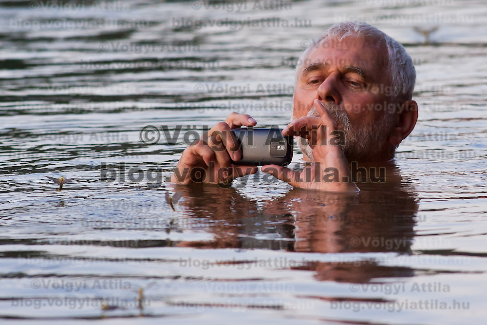 An onlooker takes a photo while having a bath as the long-tailed mayfliy (Palingenia longicauda) swarming is in progress on the river Tisza in Tiszainoka (some 135 km south-east from Budapest), Hungary on June 12, 2011. ATTILA VOLGYI