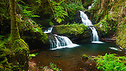 Onomea Waterfalls, Hawaii Tropical Botanical Garden, Hamakua Coast, The Big Island, Hawaii USA