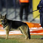 Police's dog during their Turkish superleague soccer match Eskisehirspor between Galatasaray at the Eskisehir Ataturk Stadium in Eskisehir Turkey on Saturday, 02 March 2013. Photo by TURKPIX