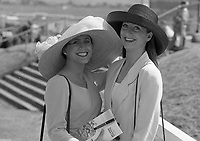 Punchestown Horse Races, in Punchestown, Dublin, 26/04/1995 (Part of the Independent Newspapers Ireland/NLI Collection).