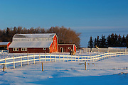 Red barn and white fence<br /> Whitewood<br /> Saskatchewan<br /> Canada