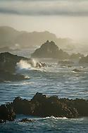 Coastal rocks and fog at Jug Handle State Natural Reserve; Mendocino County coast; California