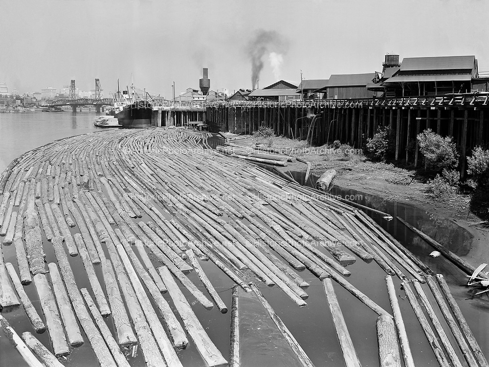 9114-11528-12. logging on Portland waterfront. Inman Poulson Lumber Co, at the base of East Sherman St. 1931.