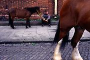 A boy with his horse on the Ballymun estate, Dublin