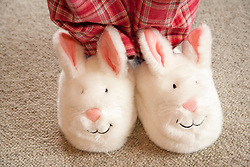 North America, United States, Washington, Crystal Mountain, fuzzy rabbit slippers