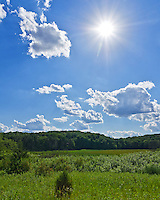 The sun shines over a meadow in the Kettle Moraine State Forest of Wisconsin as cumulus clouds move across the sky. This is a popular mountain biking area with many miles of trails built for that purpose.<br />
