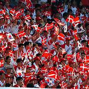 Korean Denmark fans
