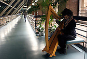 CALVIN ARSENIA plays harp for attendees of the 28th Annual Folk Alliance International conference was held in Kansas City over the weekend. Folk artist from all over the world come to showcase their talent to the industry.