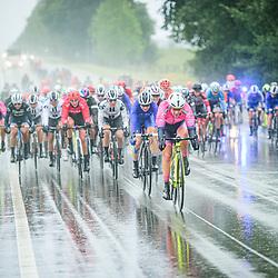 Peloton – Querformat - quer - horizontal - Landscape - Event/Veranstaltung: Liège Bastogne Liège - Category/Kategorie: Cycling - Road Cycling - Elite Women - Elite Men - Location/Ort: Europe – Belgium - Wallonie - Liège - Start: Bastogne-Womens Race - Liège-Mens Race - Finish: Liège - Discipline: Road Cycling - Distance: 257 km - Mens Race - 135 km - Womens Race - Date/Datum: 04.10.2020 – Sunday - Photographer: © Arne Mill - frontalvision.com