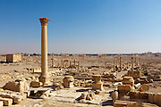 Palmyra seen from the Temple of the Standards (said to be location of the Palace of Zenobia), Syria. Ancient city in the desert that fell into disuse after the 16th century.