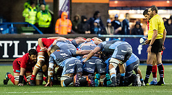 Richard Wigglesworth of Saracens waits to put in to the scrum<br /> <br /> Photographer Simon King/Replay Images<br /> <br /> European Rugby Champions Cup Round 4 - Cardiff Blues v Saracens - Saturday 15th December 2018 - Cardiff Arms Park - Cardiff<br /> <br /> World Copyright © Replay Images . All rights reserved. info@replayimages.co.uk - http://replayimages.co.uk