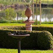 Classic Garden 813