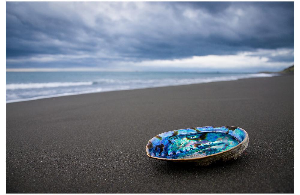 Ocean Beach, Wairarapa.