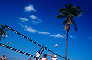 Young men stretch for the ball while playing Beach Volleyball beneath a palm tree, on 15th May 1996, in Miami Beach, Florida, USA.