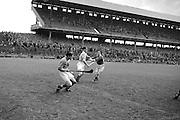 Neg No:.598/8141-8144...1954AIJHCF2...12.09.1954...All Ireland Junior Hurling Championship - Home Final..Limerick.3-5.Antrim.1-8..