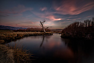 The juxtapositon of a beautiful still dead tree with clouds in motion is poetic. Reflection of pink sunset in the calm river brings balance and harmony to this serene vista in California.