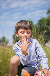 Little boy eating raspberries from fingers on meadow in countryside, Bavaria, Germany
