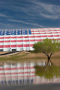 Flag painted on building reflection with tree