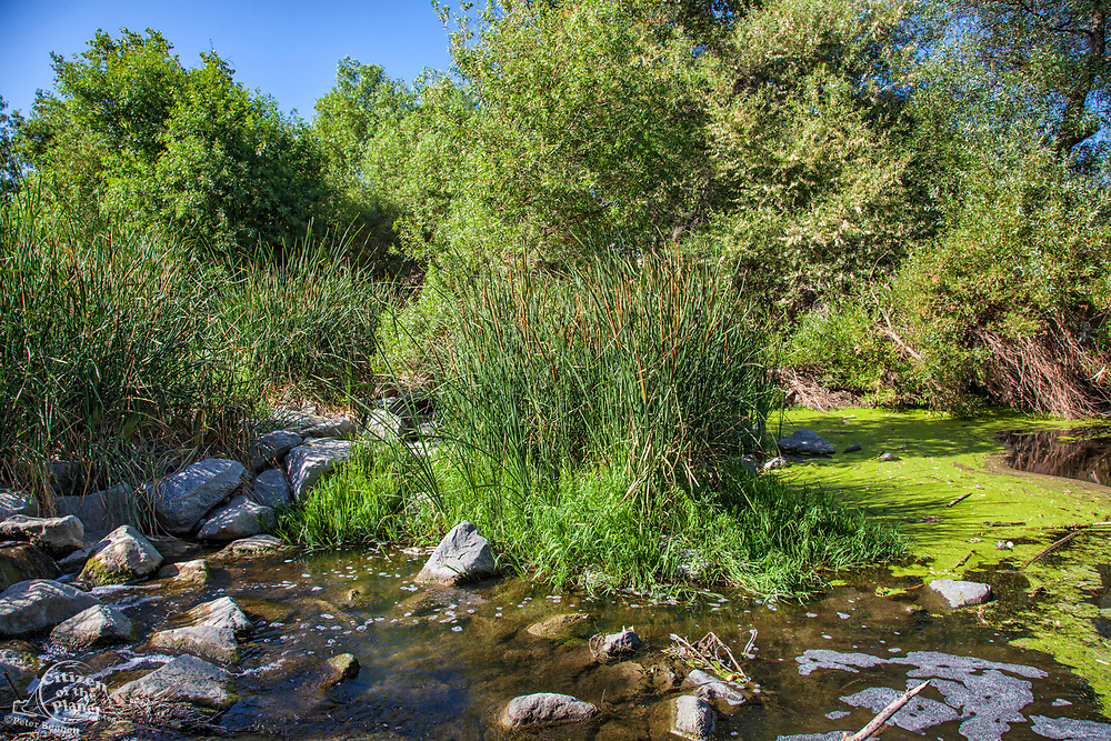 The Los Angeles River running through the Sepulveda Basin Recreation Area, Los Angeles, California, USA