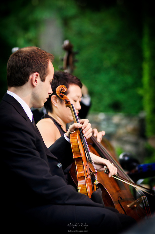 A portion of the string section for Pink Martini's performance at Longwood Gardens in Kennett Square, PA.