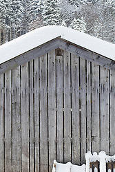 Close-up of wooden house with snow by trees