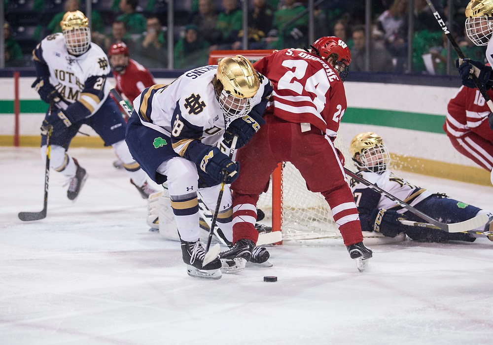 February 15, 2019:  Notre Dame forward Jack Jenkins (28) and Wisconsin forward Sean Dhooghe (24) battle for the puck during NCAA Hockey game action between the Wisconsin Badgers and the Notre Dame Fighting Irish at Compton Family Ice Arena in South Bend, Indiana.  Wisconsin defeated Notre Dame 2-1.  John Mersits/CSM