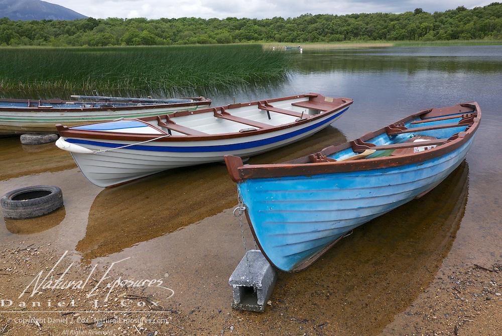 Salmon fishing boats lined across the beach, Ireland.
